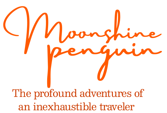 Moonshine Penguin