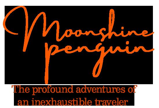 Moonshine Penguin